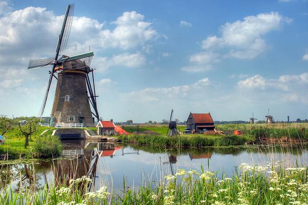 Trabajar como profesor de español en Holanda