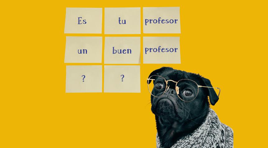 ¿Estás seguro de que tu profesor de español es un buen profesor?